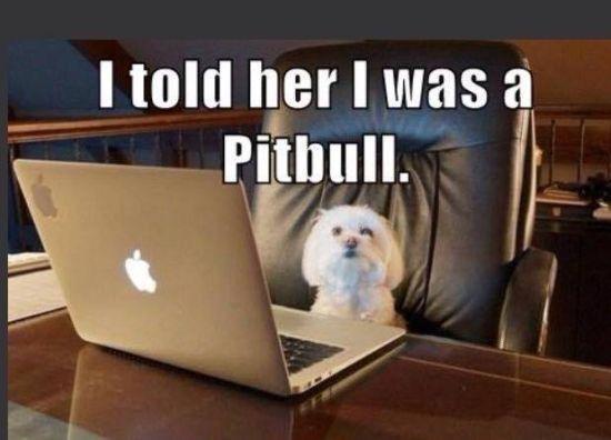 Internet dating lies